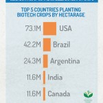 3-Top-5-countries-planting