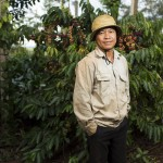 Coffee grower Nguyen Hong Ky on his plantation in Thon 2 near Buon Ma Thuot, Vietnam.