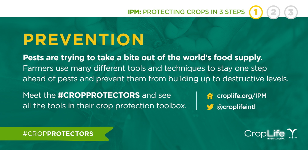 protection-crops-prevention