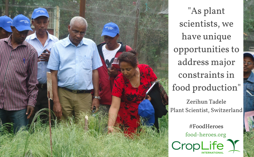 Zerihun Tadele | CropLife International