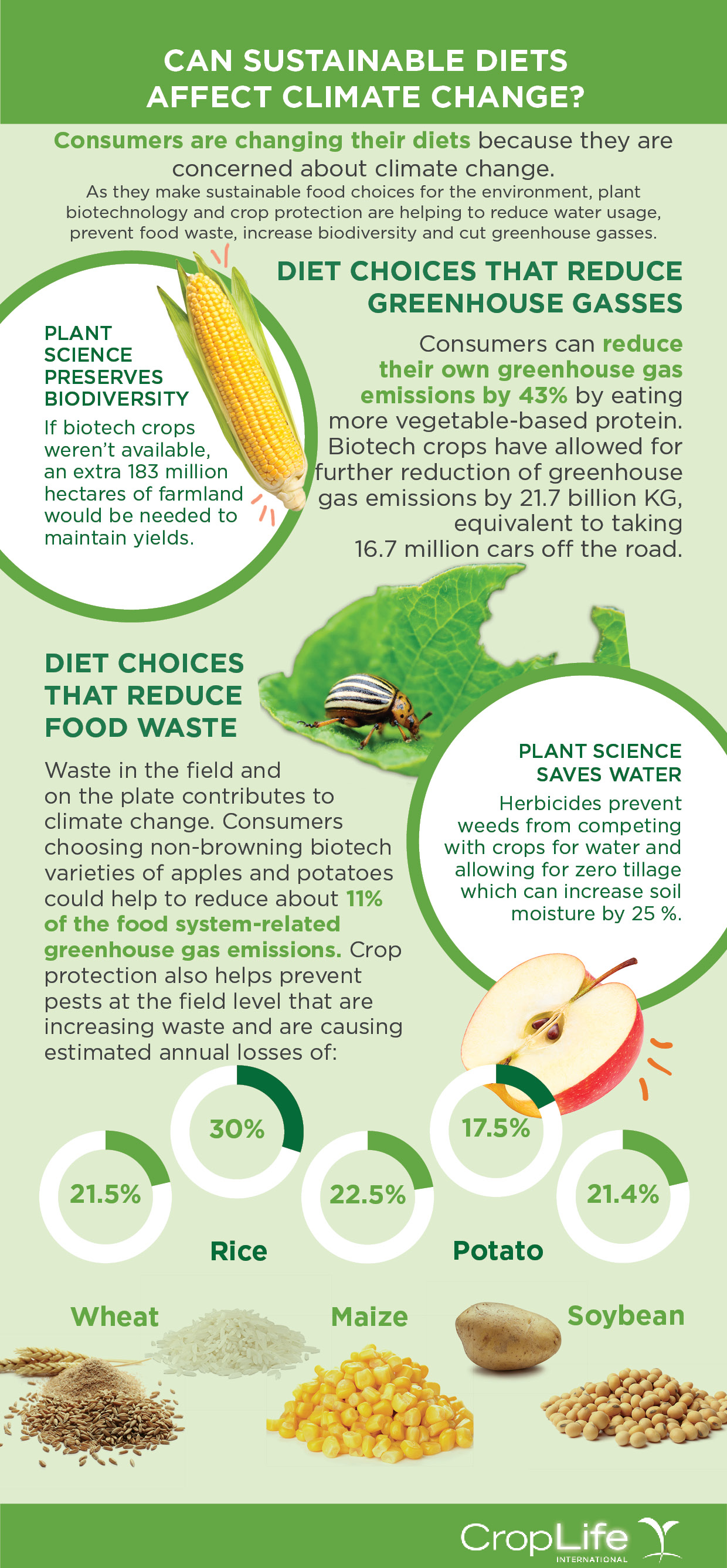 infographic, food waste, pests, biotech, crop losses, changing diets